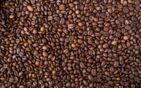 Milujete kávu? Čo všetko by ste o nej mali vedieť?